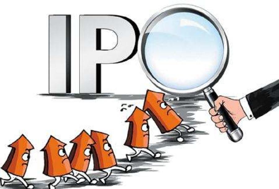 毛利率及偿债指标奇好,国盛智能IPO让人看不懂