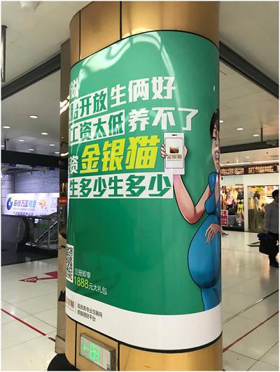 """上海P2P平台一天清盘两只""""猫"""""""